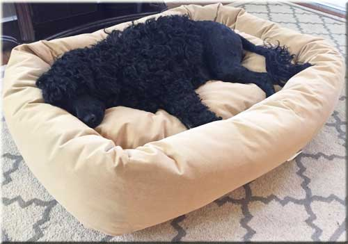 Mammoth Luxury Dog Bed