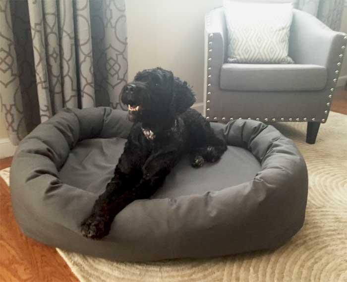 Mammoth Memory Foam Dog Beds