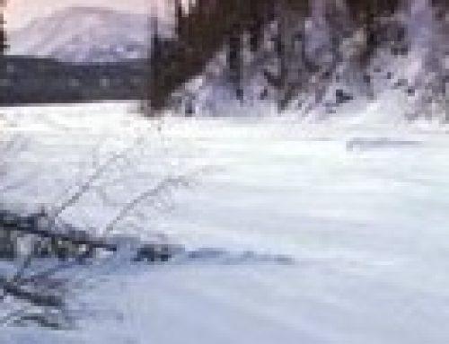 The Last Great Race – Iditarod 2011