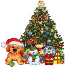 dog under tree