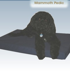 mammoth dog beds for large dogs - usa vet recommended beds