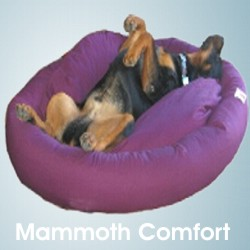Mammoth comfort donut dog bed