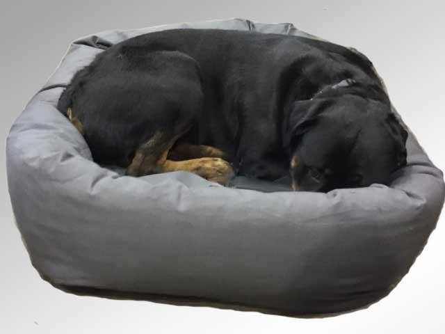 Fabulous Rottweiler Dog Bed Evergreenethics Interior Chair Design Evergreenethicsorg
